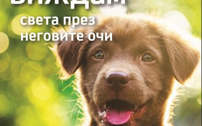 Vimax.bg подкрепя фондация